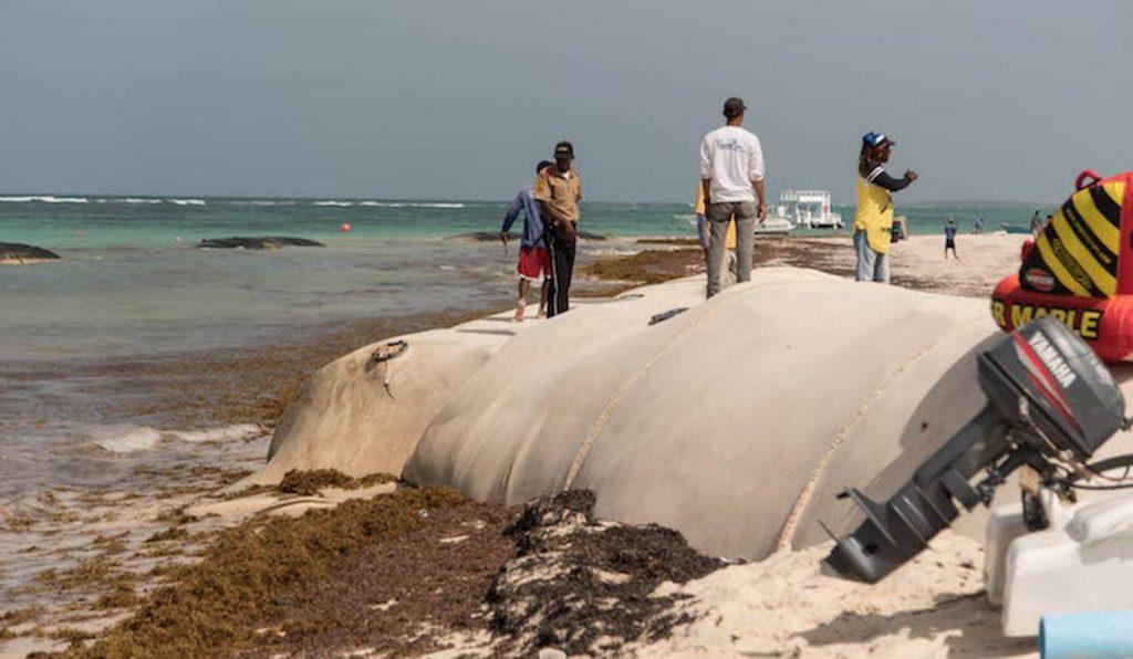 Regeneración de playas es un trabajo urgente en República Dominicana