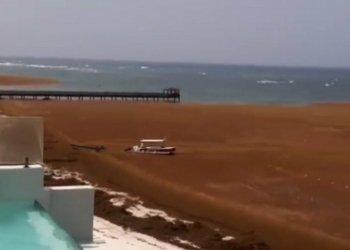 Sargazo en Punta Cana